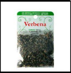 Verbena